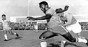 פלה-1960